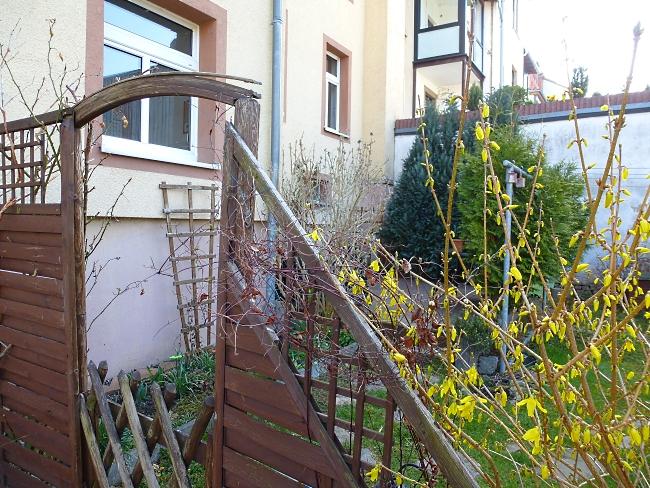 kleiner Garten mit Terrasse am Haus