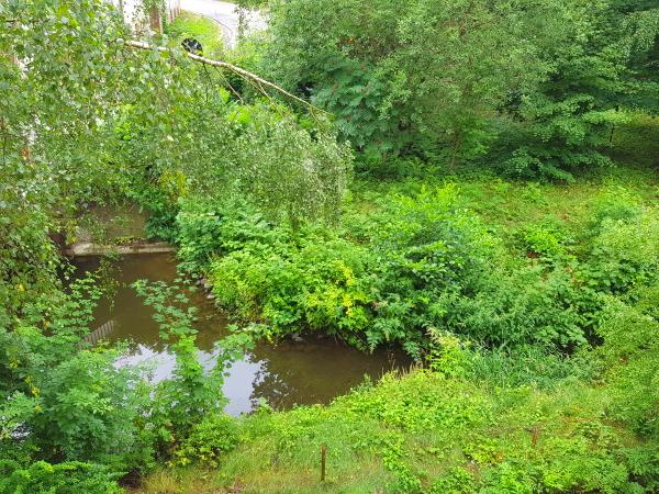 kleiner Fluss direkt hinter dem Haus