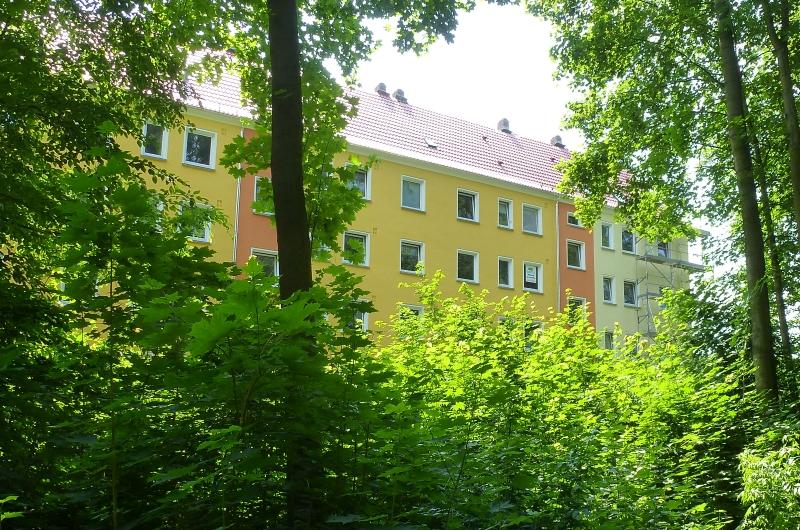 direkt am Park von Falkenau